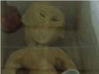 长沙拍到外星人事件真相(图)