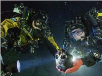 水下洞穴潜水发现世界最早美洲人骨骼(图)