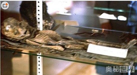 罗斯维尔UFO事件:发现外星人尸体